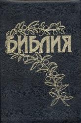 Goetze Study Bible - hardback - black - white